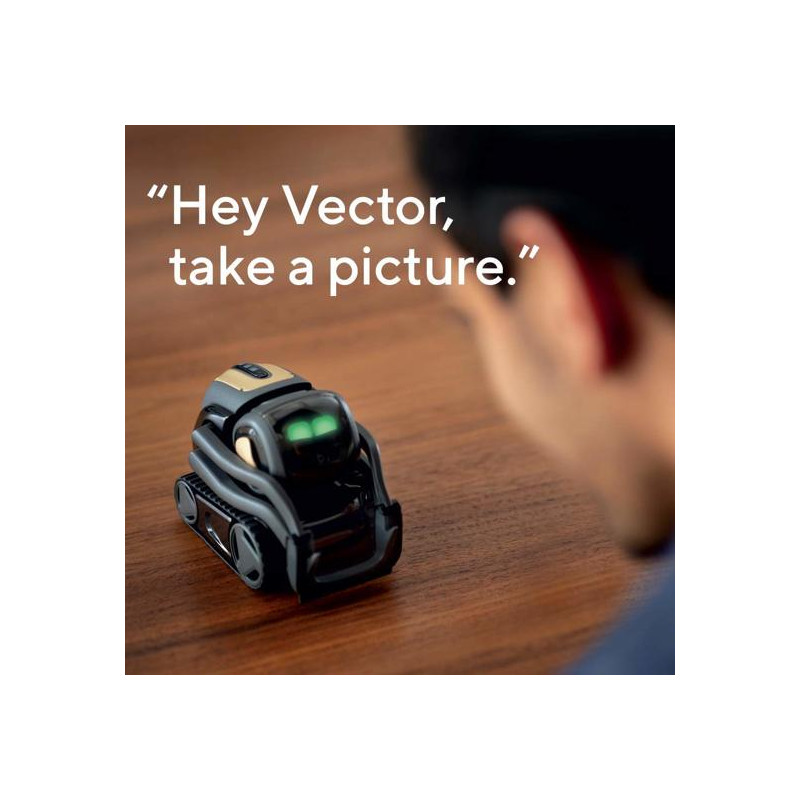 Anki Vector