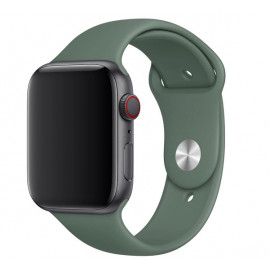 Apple Sport Band Apple Watch 42mm / 44mm Pine Green